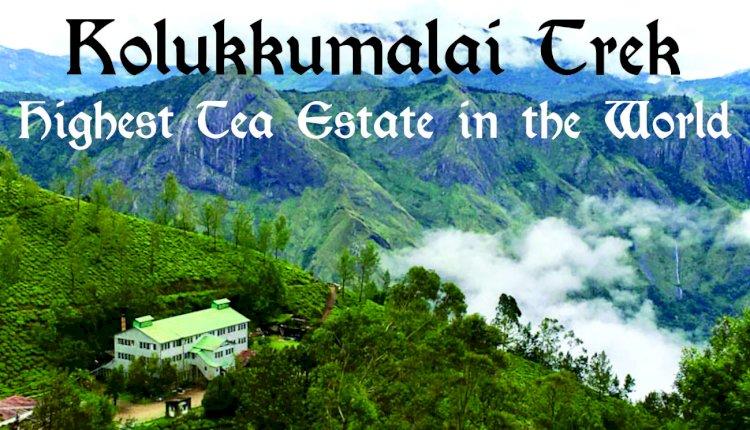 Kolukkumalai Trek - Highest Tea Estate in the World